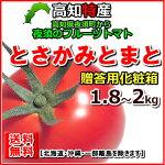 【送料無料】土佐香美産夜須フルーツトマト約2kg(1.8〜2kg)