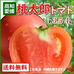 送料無料高知産・トマト桃太郎とまと4kg