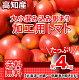【送料無料】高知産・訳あり桃太郎トマト約4kgたっぷりとまとトマトサミット北海道1000円…