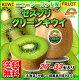 【送料無料】ニュージーランド産グリーンキウイフルーツキウィ27個〜33個入り約3kg