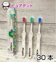 【メール便送料無料!】CIキッズ歯ブラシ はらぺこあおむし 30本入 M 個包装 3色アソート 日本製