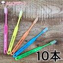 【ウィルデント】モアクリーン コンパクト 10本入 歯ブラシ