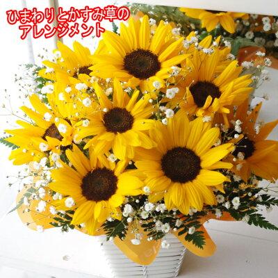 母の日 ひまわり かすみ草 フラワーアレンジメント アレンジ 人気 ギフト 花