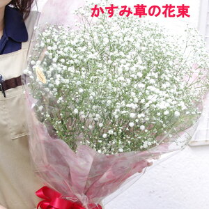 かすみ草・カスミソウ・花束 ボリュームいっぱい【送料無料】プレゼント ギフト 写真 誕生日 還暦お祝い