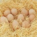 人間の本来の力を高める卵!産みたてを大阪から産地直送!平飼い烏骨鶏の卵10個入り【有精卵】...