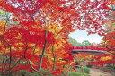 ジグソーパズル 1000ピース 弥彦公園もみじ谷-新潟 (50x75cm)(10-748) エポック社 梱80cm t101