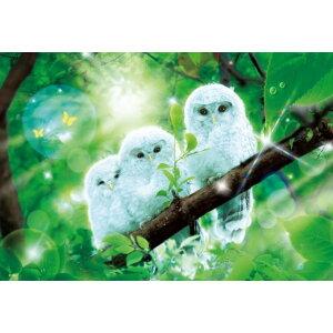 [现货]拼图1000片Wilfer快乐的白色猫头鹰微片(26x38cm)(M81-534)富康包装60cm b100