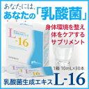 L16-1box-p-01