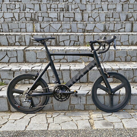 【父の日!マグオンをプレゼント】【限定カスタマイズモデル】TERN(ターン) 2018年モデル SURGE(サージュ サージ) カーボンバトンホイール仕様[スポーティー][ミニベロ/折りたたみ自転車]