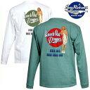 バズリクソンズ ミリタリー長袖Tシャツ ピンナップガールデザインTシャツ 米国製 br68082
