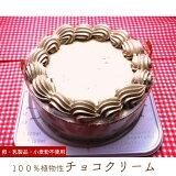 アレルギー対応 100%植物性チョコクリーム ホール 5号 15cm チョコレートケーキ バースデーケーキ 誕生日ケーキ 乳・卵・小麦を使用していないスイーツ