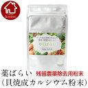 アーデンモア 農薬除去用粉末 やくばらい 薬ばらい 100g