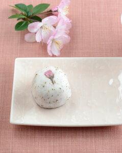 sakuraしだれ桜菓子皿2色b72075