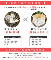 【商品名:バックスタイルストローハット】5月末発送