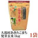 特別栽培米 大潟村 あきたこまち 発芽玄米 1kg ×1袋