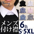 大人気!! 【男のつけ襟】【着け襟 付け襟 クールビズ 父の日 シャツ 夏 涼しい coolbiz ワイシャツ 大きいサイズ M L LL XL XXL XXXL XXXXL XXXXXL】父の日 ギフト 黒 白 大きいサイズあり20代 30代