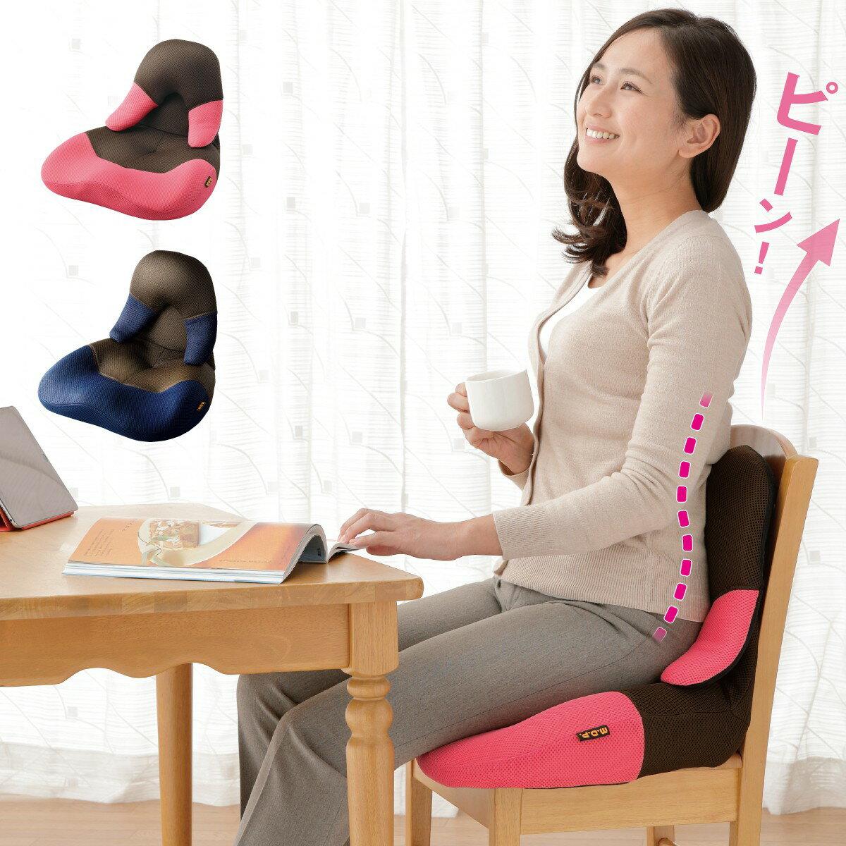 姿勢矯正 座椅子 腰痛 シートクッション イス用 勝野式 美姿勢習慣コンパクト