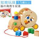 知育玩具 1歳 型はめパズル 木のおもちゃ 出産祝い ウッデ...