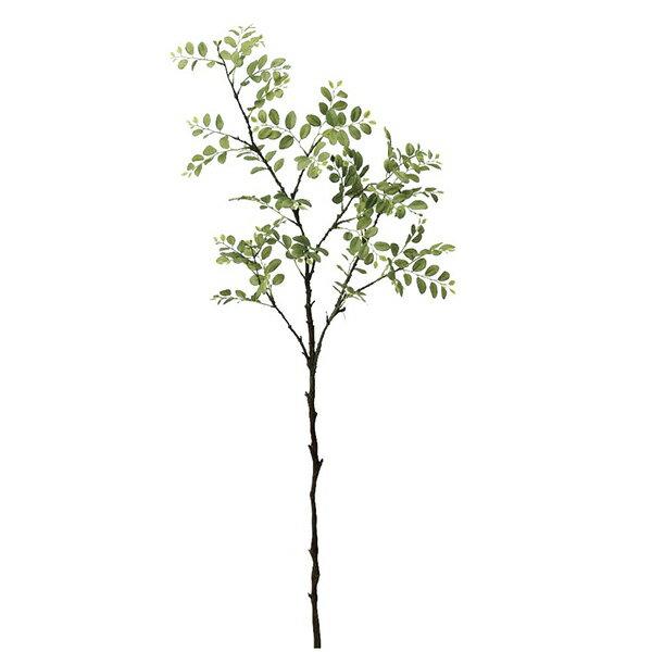 《 造花 グリーン 》◆とりよせ品◆Asca(アスカ) トネリコ グリーンインテリア フェイク
