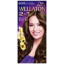 HFCプレステージ 「WELLATON(ウエラトーン)」 2+1 クリーム 6GM