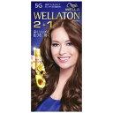 HFCプレステージ 「WELLATON(ウエラトーン)」 2+1 液状タイプ 5G