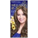 HFCプレステージ 「WELLATON(ウエラトーン)」 2+1 液状タイプ 7GM
