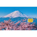 SoftBank Prepaid SIM for Travel セット(MF1) ZGP939