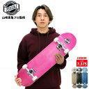 YUKIデザイン ジュニア オリジナル コンプリート DECK 7.375-7.5インチ 完成品 SKATEBOARDS プロスケートボーダー 山崎勇亀監修 スケートボード
