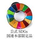 \正規販売店/ 国連本部限定販売 SDGs ピンバッジ 日本未発売 UNDP 丸みタイプ 1個 バッチ 国連 おすす...