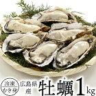 お得!広島県産牡蠣カキたっぷり1kg(解凍後850g)【冷凍便限定】