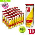 [ウィルソン テニスボール]CHAMPIONSHIP EXTRA DUTY/チャンピオンシップ・エクストラ・デューティー『3球入×24缶』(WRT100101)