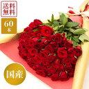 【送料無料】新鮮な国産赤バラ60本 赤 バラ 薔薇 60本 花束 花 生花 フラワー 国産 産地直送 送料無料 誕生日 記念日 還暦 プレゼント ギフト お祝い VOR60