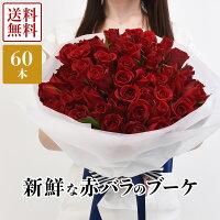 新鮮な国産赤バラ60本、送料無料、メッセージカード付き