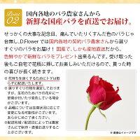 生産量日本一の愛知から新鮮な国産バラを直送でお届け。