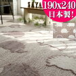 洗える 日本製 じゅうたん 抗菌 防ダニ ラグ カーペット 無地 190×240 約3畳 洗える ラグマット 長方形 絨毯 送料無料 ウォッシャブル ホットカーペットカバー