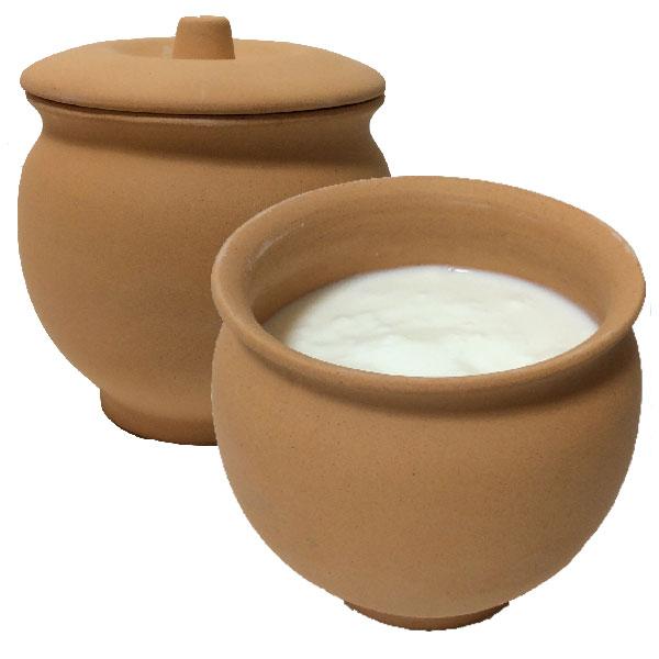 素焼き ヨーグルトメーカー 日本製 常滑焼 手作り 説明書付き(壺 つぼ ツボ テラコッタ 陶器)自家製 ヨーグルトを楽しく【ダヒヨーグルト種菌などヨーグルト菌は別売りです】