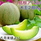 島根/益田産アムスメロン大玉2個入り箱
