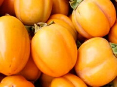 忘れられないこの甘さ!絶妙な食感と風味は格別です。一度は食べて頂きたいおすすめの柿です島...