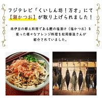 カネサ鰹節商店潮かつお切り身75gおつまみ和食しおかつお