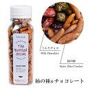 柿の種&チョコレート 100g バレンタイン 石チョコ ミルクチョコ ストーンチョコ 三角屋水産