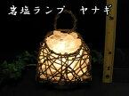 岩塩ランプ 【 ソルトランプ 】柳クリスタルホワイト (ヒマラヤ岩塩クリスタルホワイト岩塩)