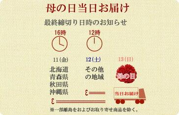 【送料無料】色物お洒落半衿(半襟) 菊模様/青 結婚式 成人式 フォーマル 青