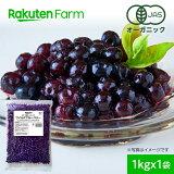 【冷凍】100%オーガニック 冷凍ブルーベリー1kg×1袋 (ワイルドブルーベリー、野生種)