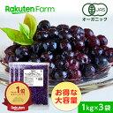 【冷凍】100%オーガニック 冷凍ブルーベリー1kg×3袋 (ワイルドブルーベリー、野生種)