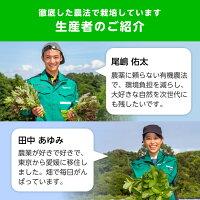 楽天農業の若い社員さんが野菜を作っています!