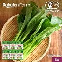 【冷凍食品】100%オーガニック 冷凍小松菜セット 6袋