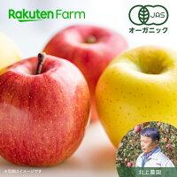 北上農園有機りんご赤黄家庭用3kgこだわり農家直送