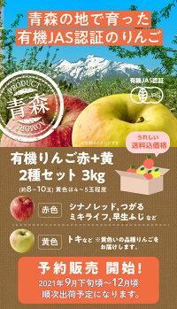 有機JAS認証のりんご3kg