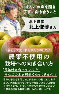 りんごの声を聞いて育てています