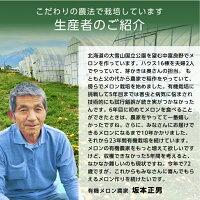 【くだもの祭り対象】こだわり農家直送北海道中富良野町こだわり農家直送坂本正男ジューシー赤肉メロン有機JAS認証糖度15度以上1個(1.4kg以上)